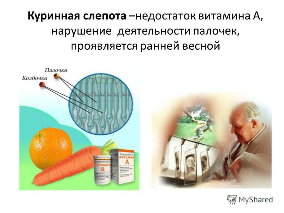 Почему при недостатке витамина а в организме возникает куриная слепота. что такое куриная слепота, как ее определить и можно ли вылечить