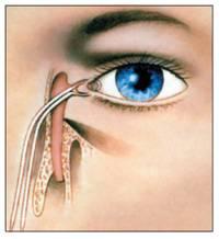 Дакриоцисториностомия - ваш врач
