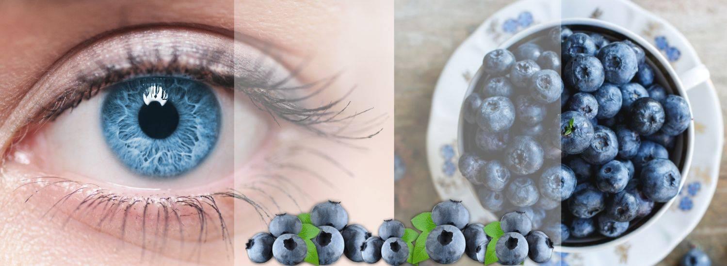 Черника для улучшения зрения