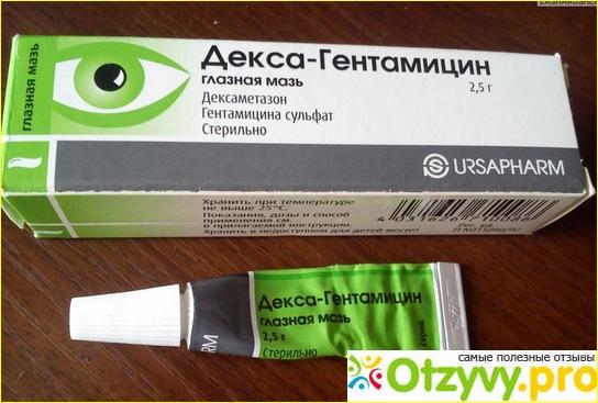 Глазная мазь декса-гентамицин: инструкция и рекомендации по применению, обзор аналогов, цена и отзывы — life-sup.ru