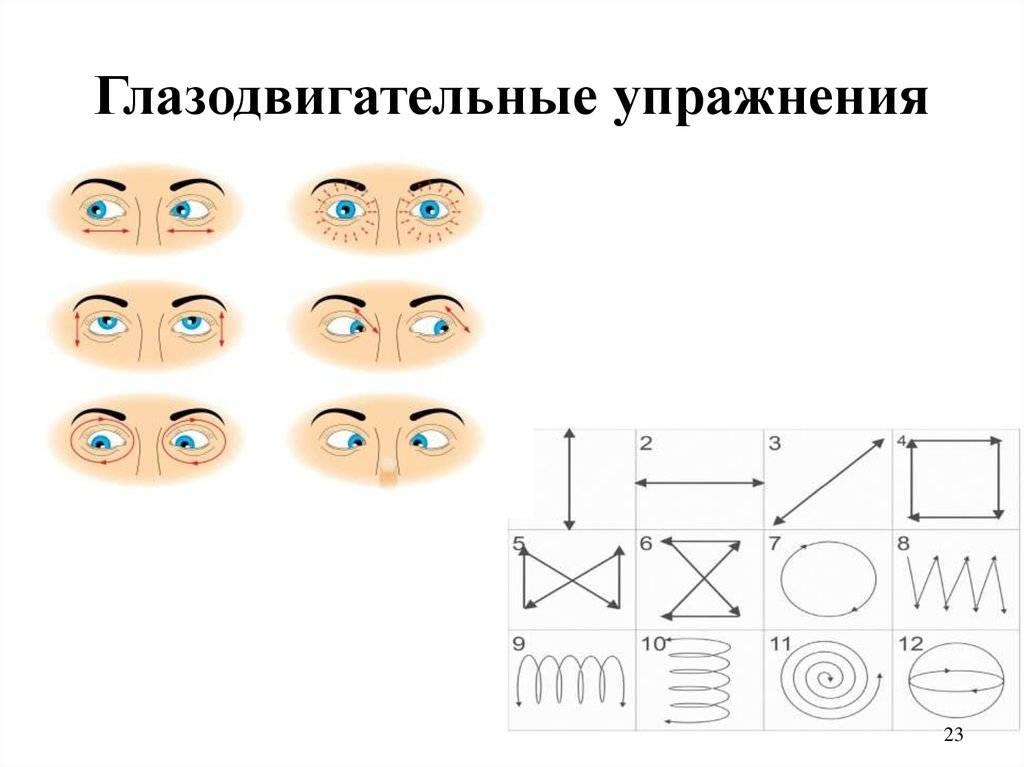 Все глазодвигательные упражнения для детей дошкольного возраста. нейропсихология и межполушарное развитие - мама света