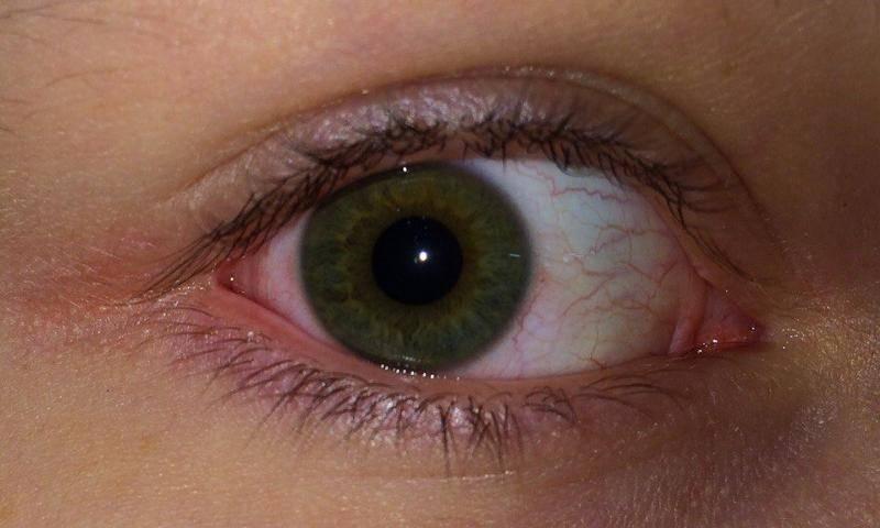 Растет ли глаз на протяжении жизни человека?