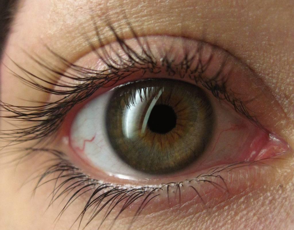 Самые редкие виды цвета глаз: янтарный, болотный, сапфировый и зелёный