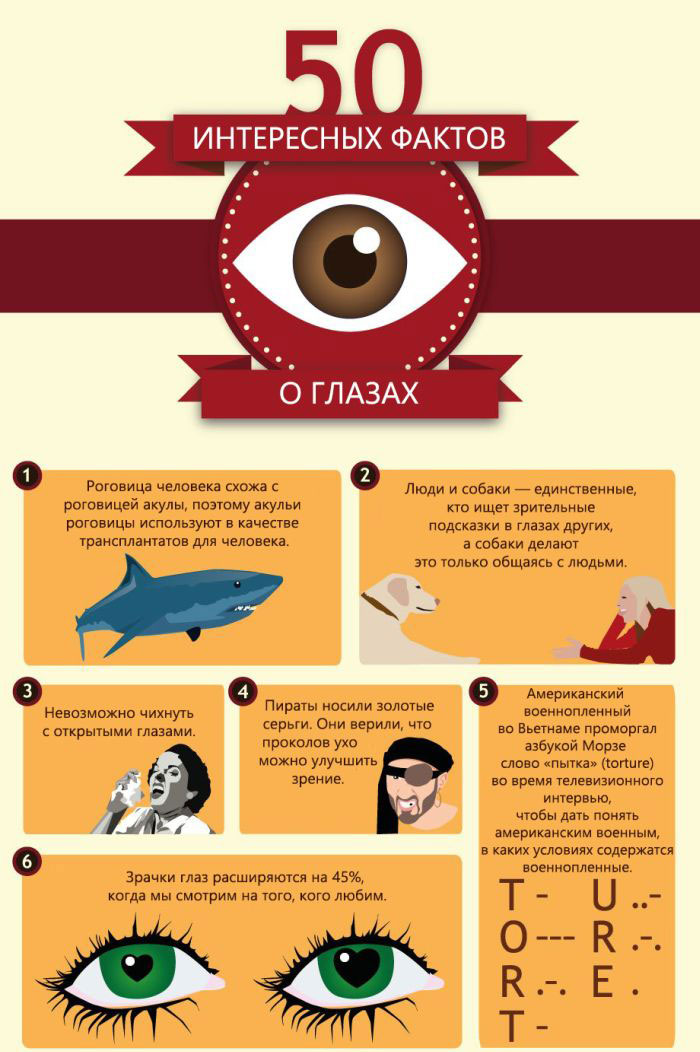 Интересные факты о глазах и зрении человека: топ-10
