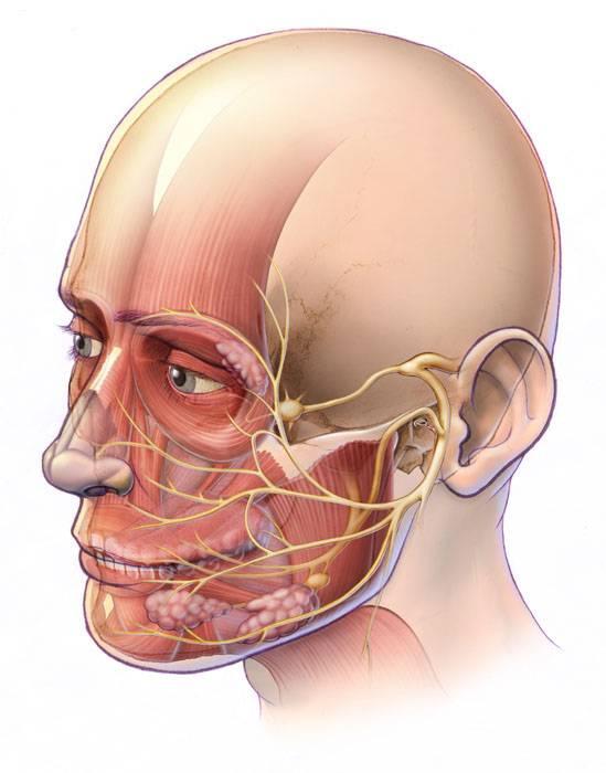 Перелом скуловой кости: симптомы, лечение, осложнения