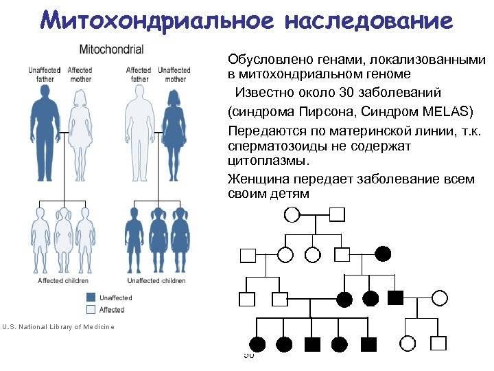 Дальтонизм у человека наследуется как. дальтонизм у детей и взрослых — виды заболевания и как наследуется ген, диагностика и ограничения. передается ли дальтонизм по наследству: причины возникновения и последствия