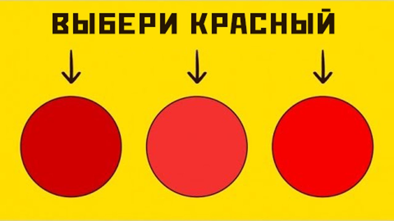 ⓘ тетрахроматия - одновременное восприятие видимого диапазона спектра электромагнитного излучения четырьмя различными типами световых рецепторов. тетрахроматия мо ..