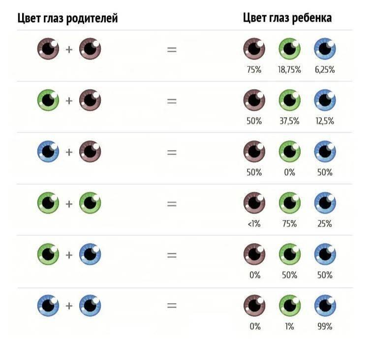 Наследование цвета глаз — закономерность или случайность