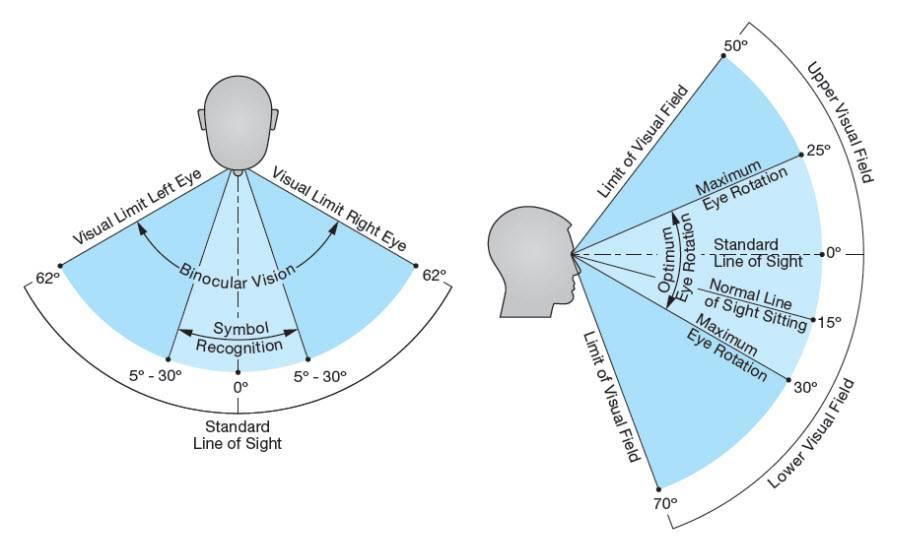 Поля зрения в норме - причины выпадение и сужение, как проверяют, проверка