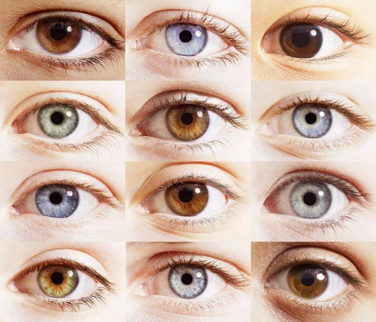 """Форма глаз человека: как определить и изменить - """"здоровое око"""""""