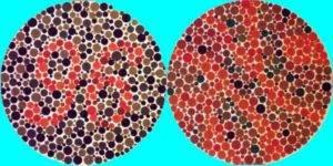 Монохромазия: причины проявления заболевания