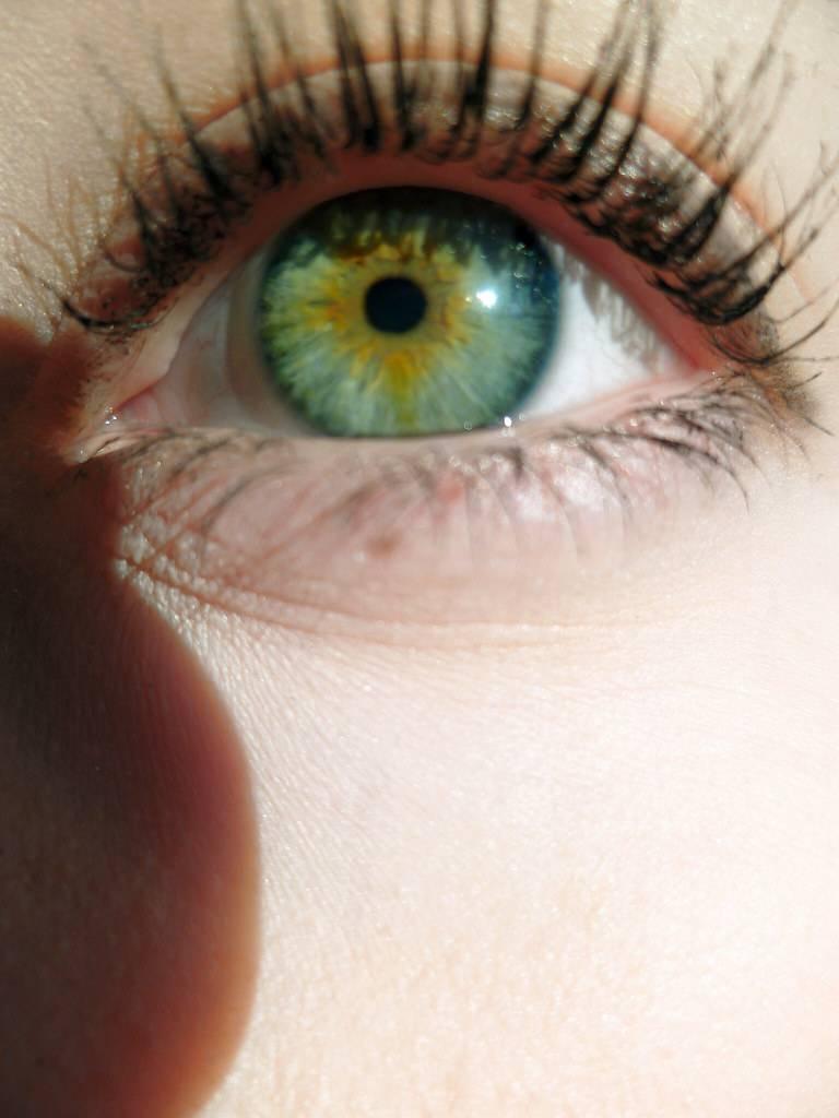 Почему бывают глаза разных цветов у людей и животных
