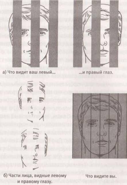 Один глаз видит хуже другого: как исправить, причины oculistic.ru один глаз видит хуже другого: как исправить, причины