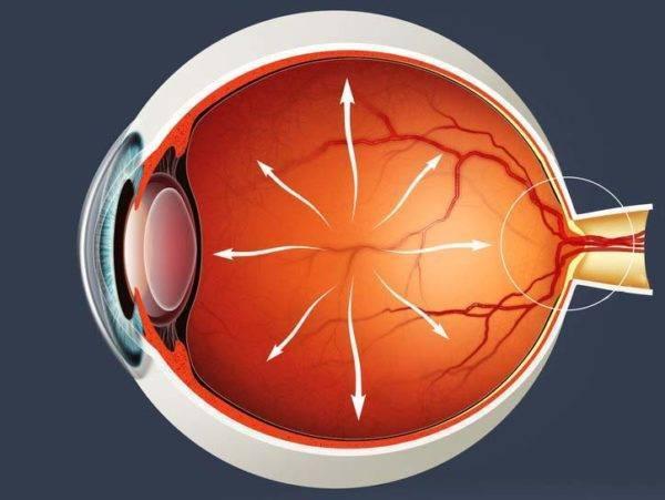 Симптомы глаукомы у взрослых на ранней стадии, можно ли вылечить глаза во время первых признаков заболевания