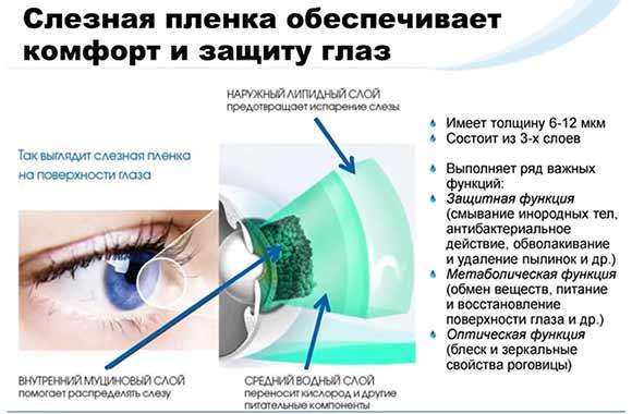 4 стадии развития синдрома сухого глаза
