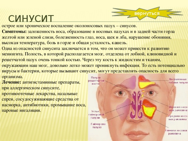 Температура и болят веки глаз и