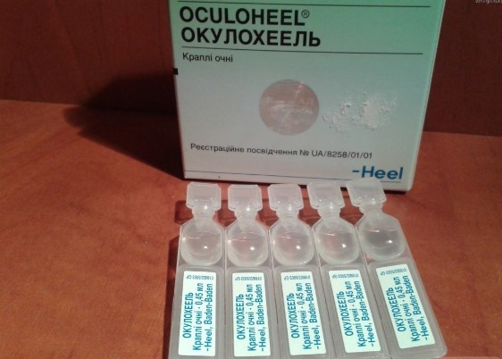 Окулохель - инструкция по применению, цена в аптеках, аналоги