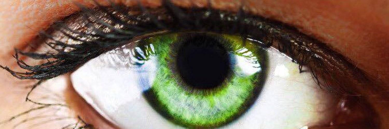 Глаза темно-зеленые. характер по цвету глаз