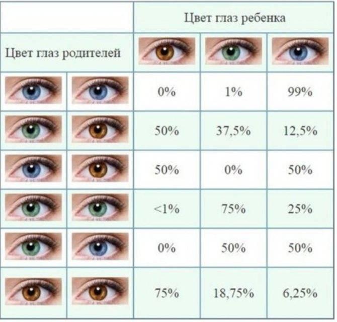 Возможные цвета глаз у ребенка от родителей: таблицы
