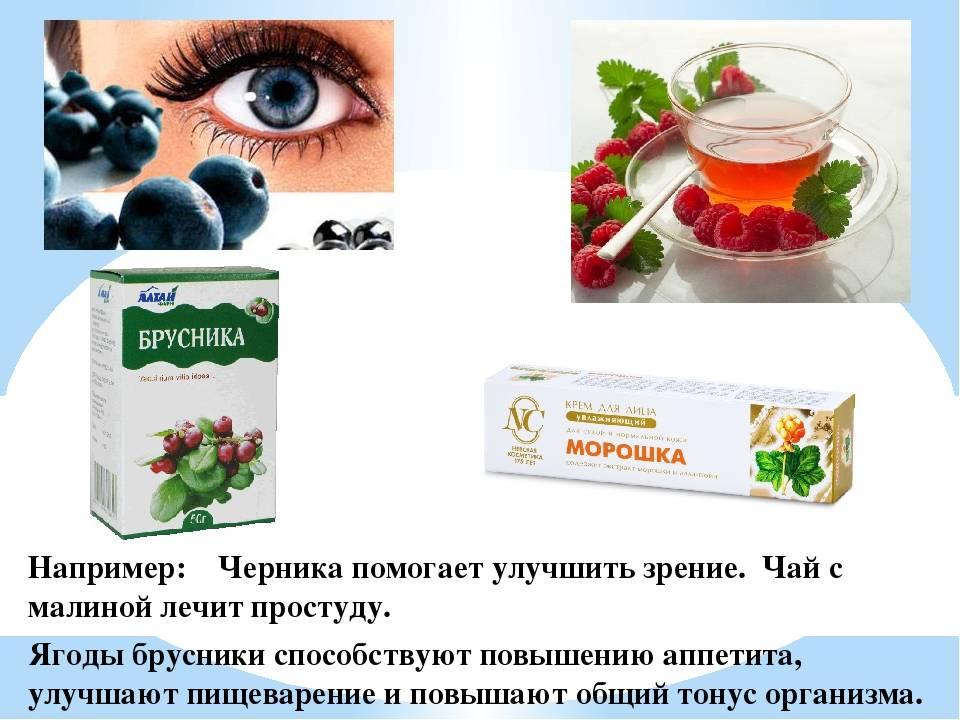Как приготовить чернику для лечения глаз