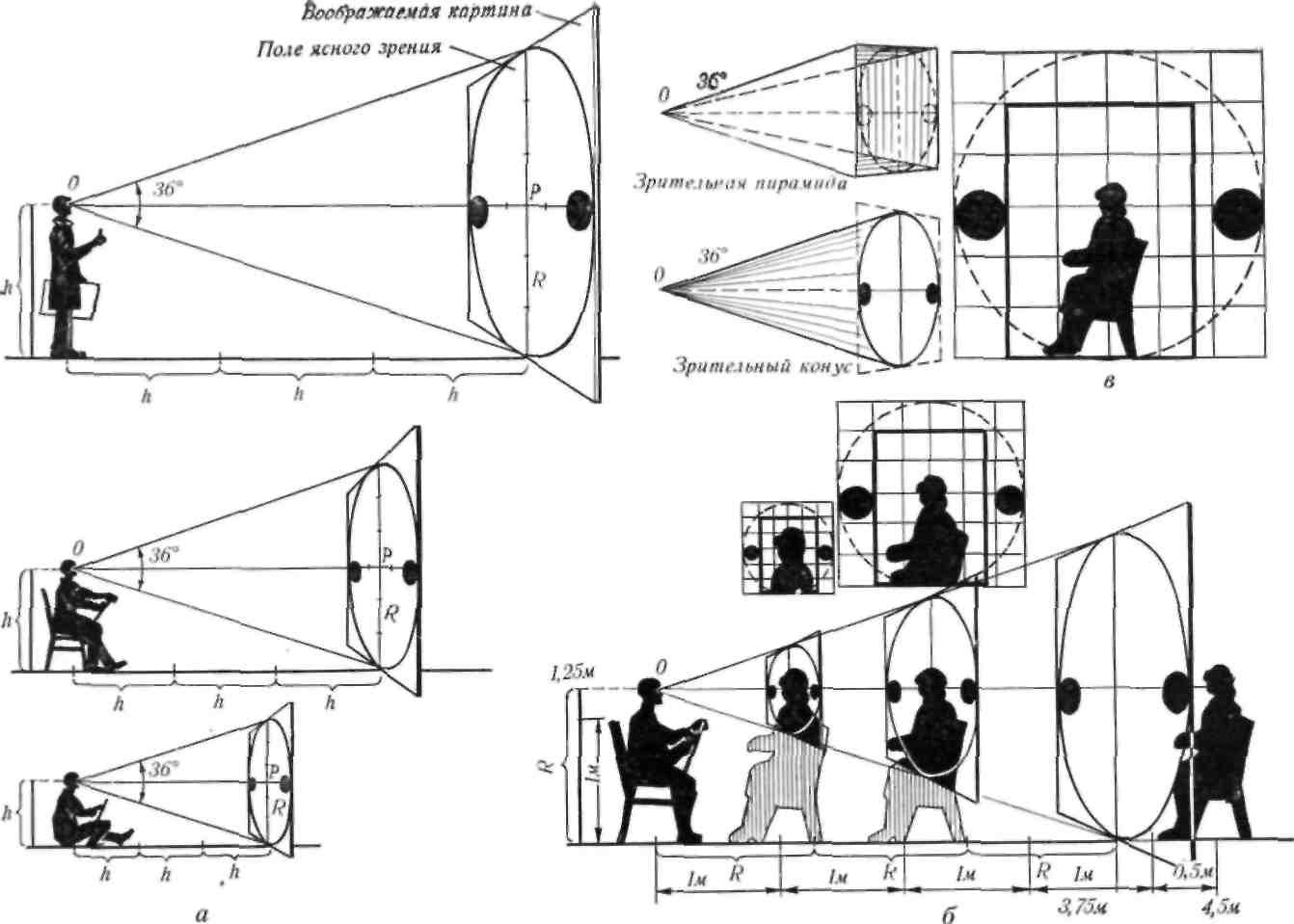 Угол зрения человека: показатели зрительного анализатора