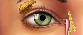 Болит глаз после сна: причины и лечение болей по утрам или после сна