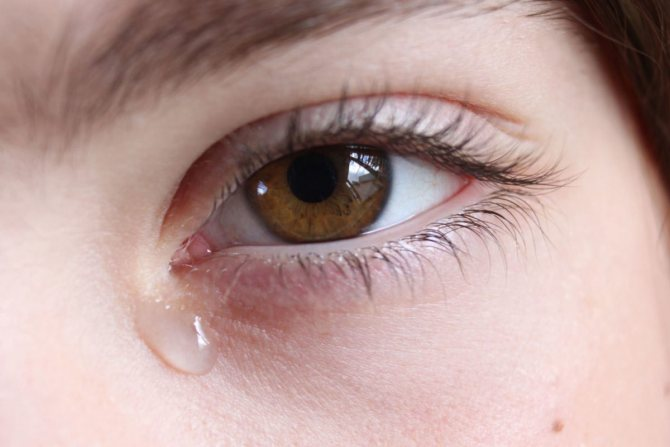 Воспаление в уголке глаза возле переносицы — про зуд