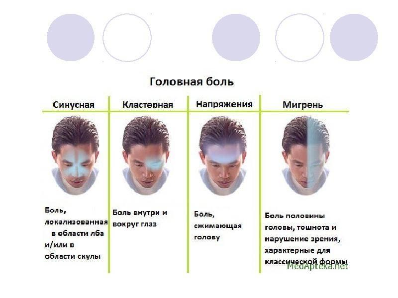 Болит голова в области лба: стоит ли переживать и чем себе помочь | клиника «гармония»