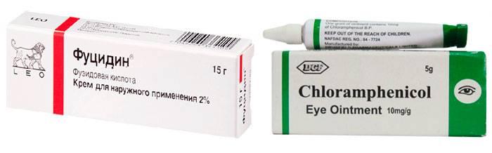 «левомицетин» (таблетки): цена, инструкция по применению, аналоги, отзывы