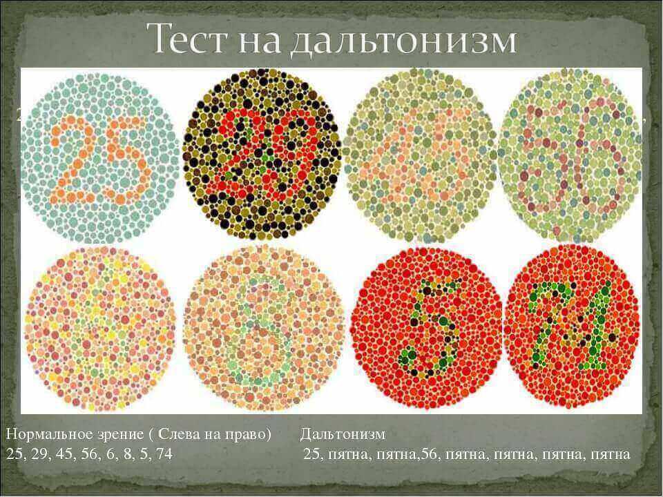 Дальтонизм: как устроена цветовая слепота?