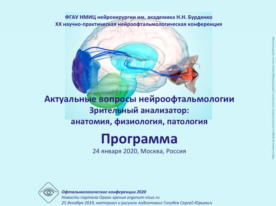 Нейроофтальмолог в москве. консультация, обследование, лечение. взрослый и детский нейроофтальмолог