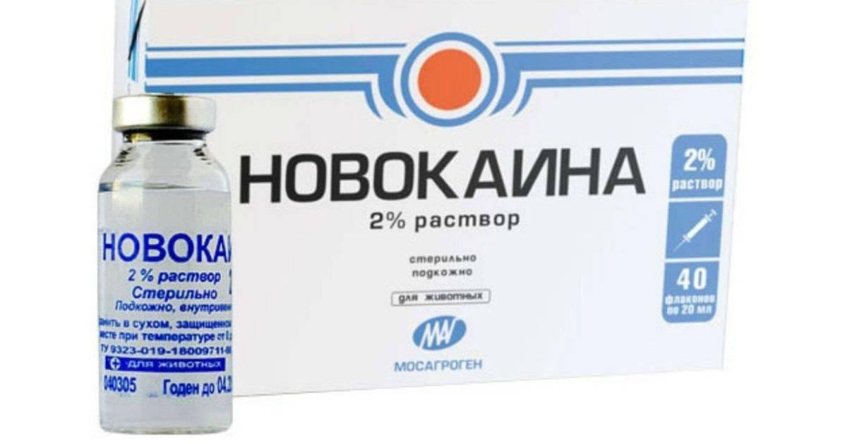 Новокаин для глаз: инструкция, аналоги, стоимость oculistic.ru новокаин для глаз: инструкция, аналоги, стоимость