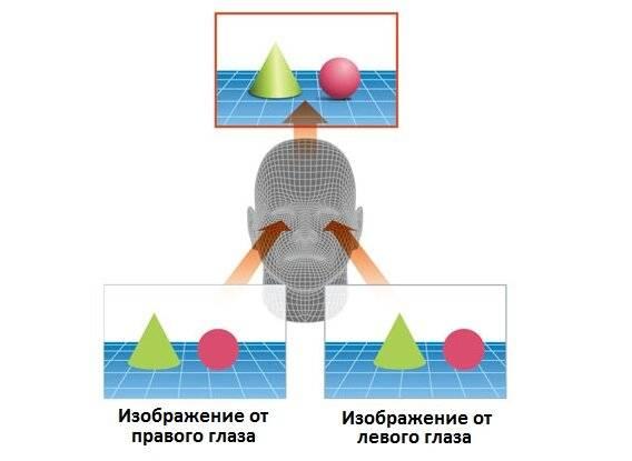 Бинокулярное зрение: особенности восприятия мира, диагностика