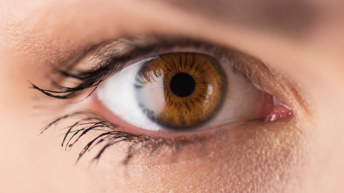 Ореховый цвет глаз