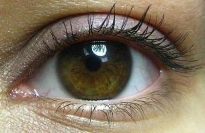 Процент обладателей болотного цвета глаз - медицинский справочник