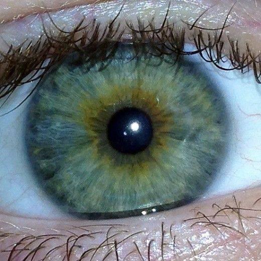 Болотный цвет глаз и его особенности