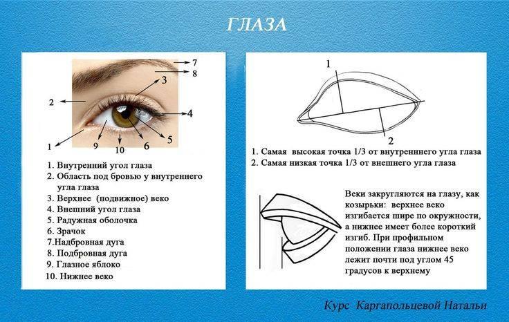 Какой тип наращивания ресниц подойдет для вашей формы глаз, фото и картинки, журнал будь красивой