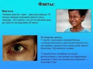 Моргание глазами у взрослых неврология. загадка нашего тела: почему мы так часто моргаем