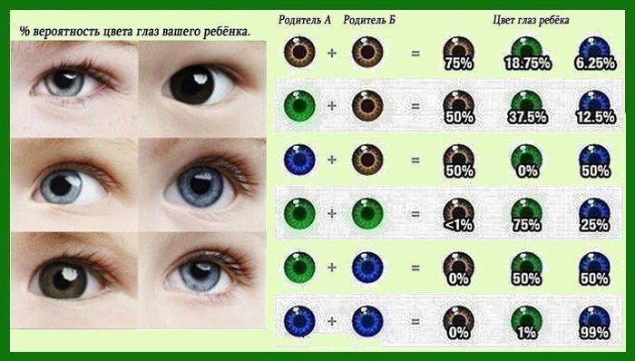 Таблица наследования цвета глаз