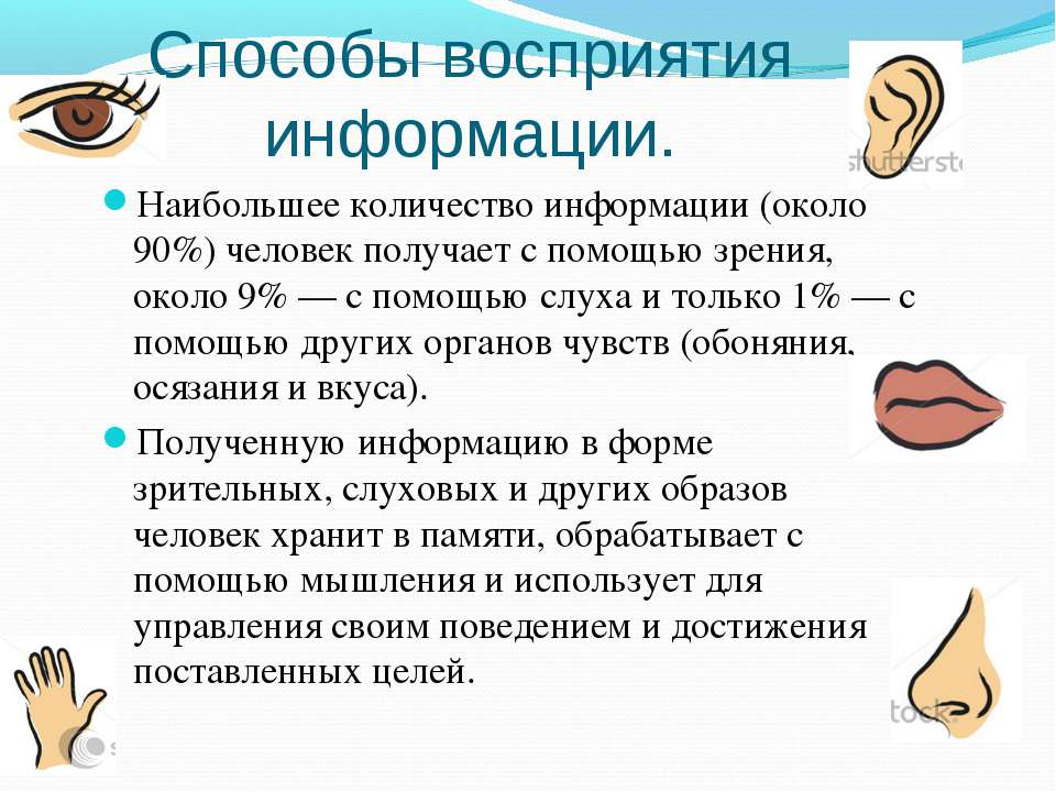Сколько информации человек получает через зрение - 103doctor.ru