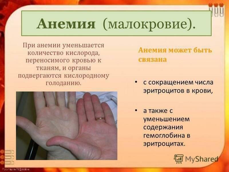 Мадароз: причины, симптомы, лечение и профилактика заболевания ресниц и бровей