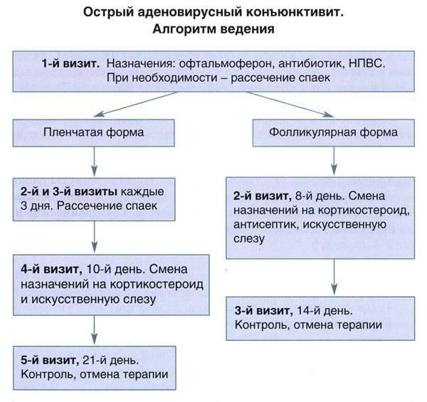 Лечение вирусного конъюнктивита у детей (19 фото): как лечить аденовирусную форму