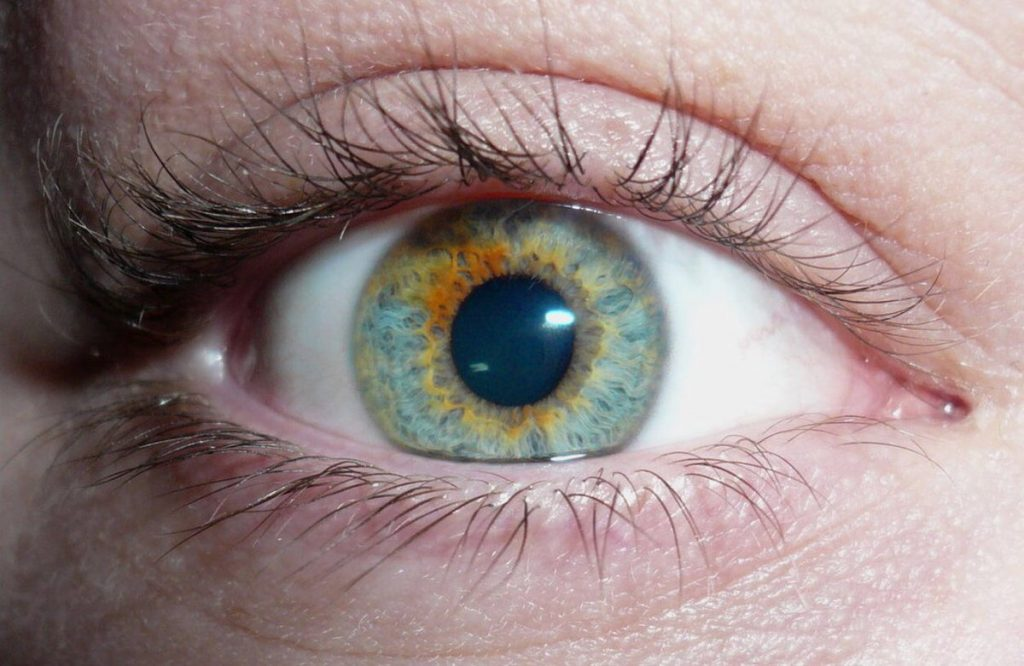 Глаза хамелеоны у человека - цвет и значение, характер и фото