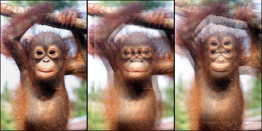 Как видят косоглазые люди: мир глазами человека с патологией
