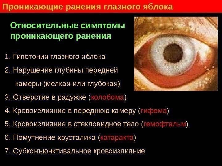 Кровь в глазу после удара: что делать, если белок заплыл, красный, чем лечить кровоподтёк, как убрать красноту, лечение травмы