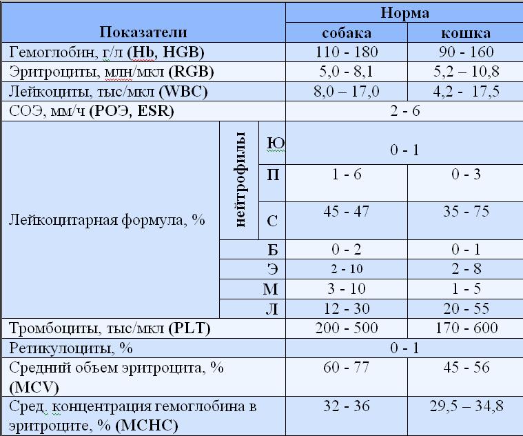 Офтальмометрия (кератометрия): показания, противопоказания, методика проведения и расшифровка результатов