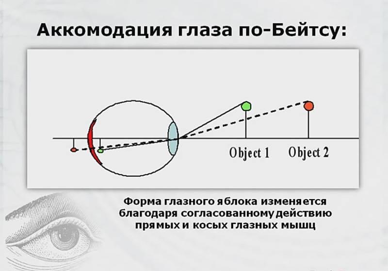 Определение объема аккомодации — офтальмология
