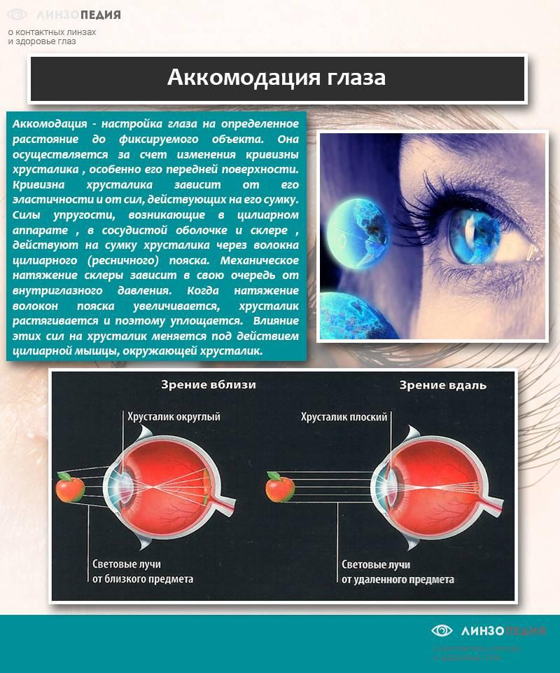 Поставили диагноз пресбиопия глаза: что это такое у взрослых, методы коррекции