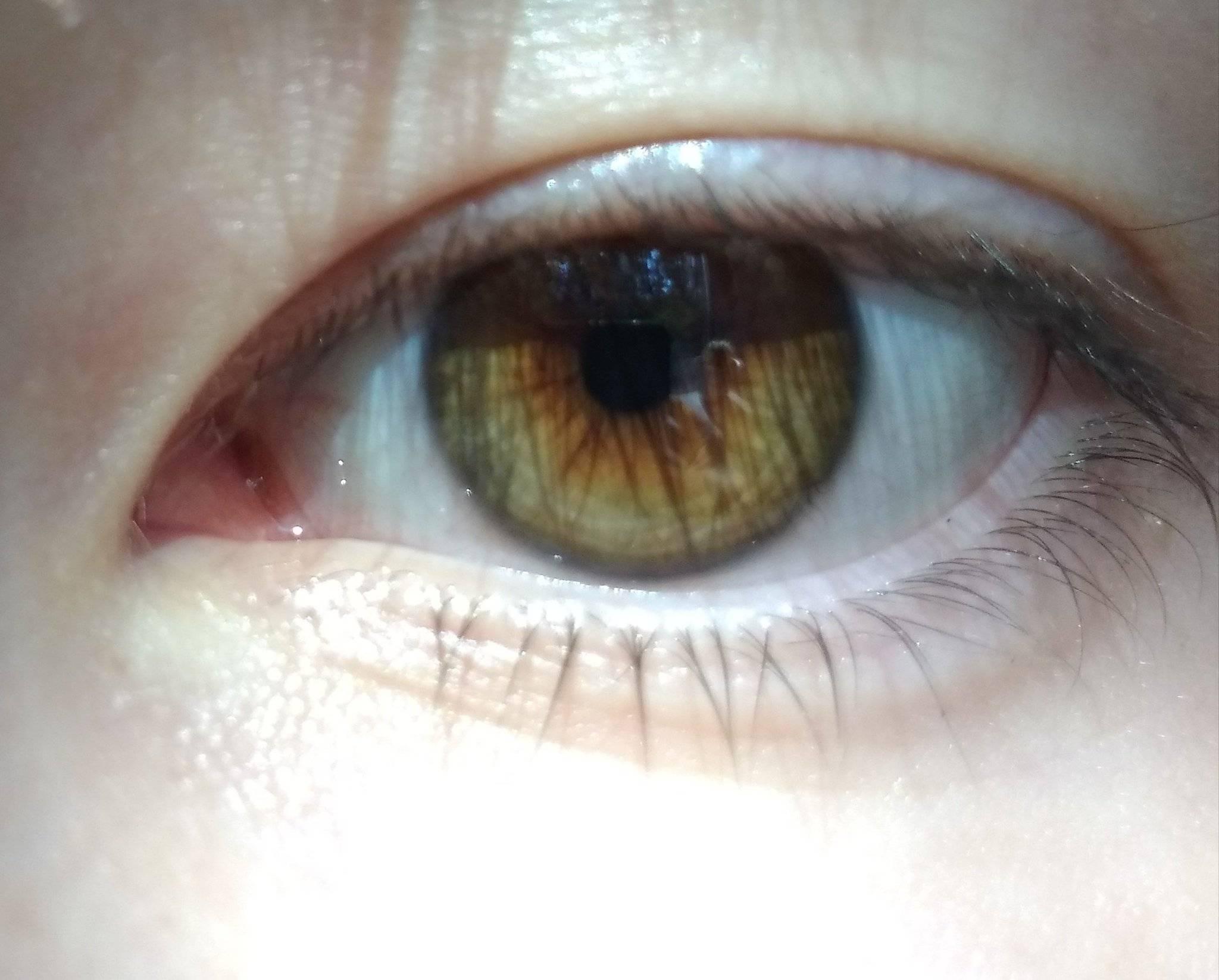 Цвет глаз расскажет всё о характере человека. определение характера человека по цвету глаз