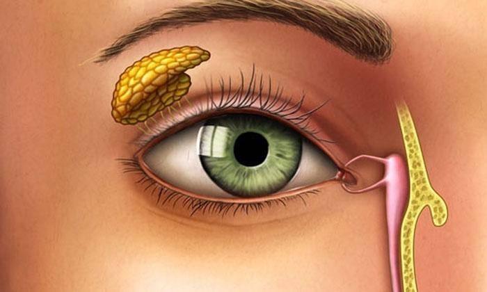 Гноится глаз при простуде - простудные заболевания
